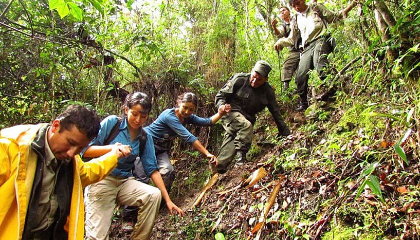 Rangers and researchers in the Madidi national park in Bolivia.